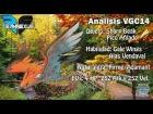 An�lisis VGC14 | Talonflame rosa