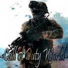 -Call of Duty World-